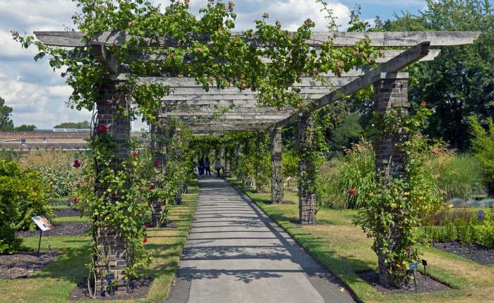 Long Term Garden Improvements