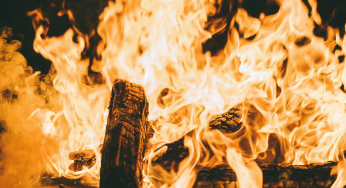 You should consider the type of fuel before purchasing your new wood burner.