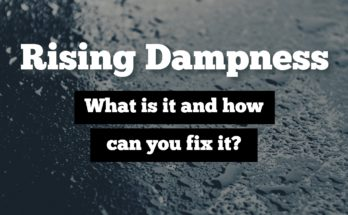 rising dampness