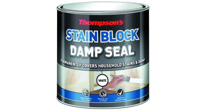 Thompson's Damp Seal Paint