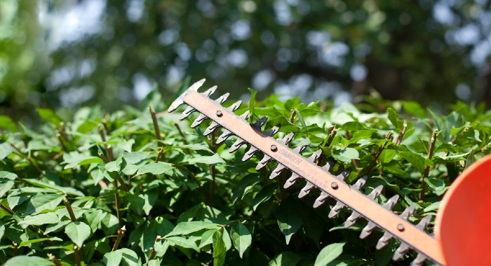 Hedge Trimmers UK