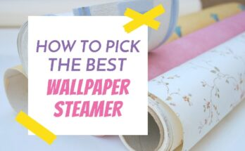 Best Wallpaper Steamer