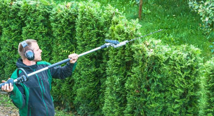 How Does A Long Reach Hedge Trimmer Work?