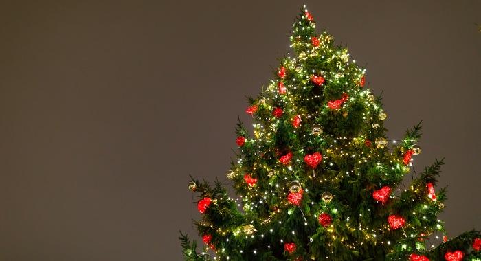 Decorate a fibre optic christmas tree
