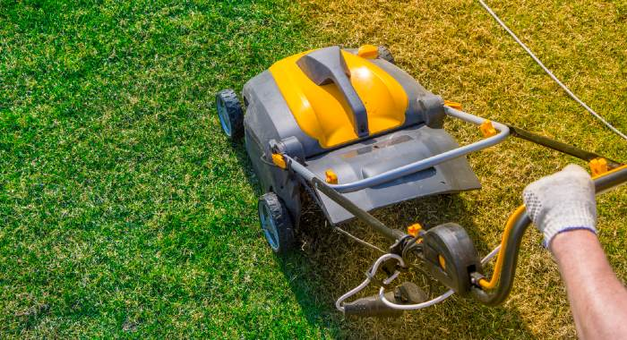 There are several reasons to scarify your lawn, being the avoidance of lawn quality deterioration one of them.