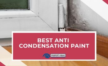 Best Anti Condensation Paint
