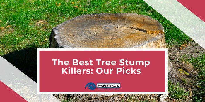 Best Tree Stump Killer