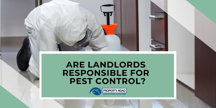 Are Landlords Responsible For Pest Control_