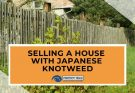 Selling A House With Japanese Knotweed