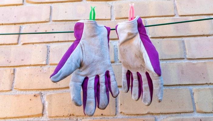 Choosing The Best Gardening Gloves